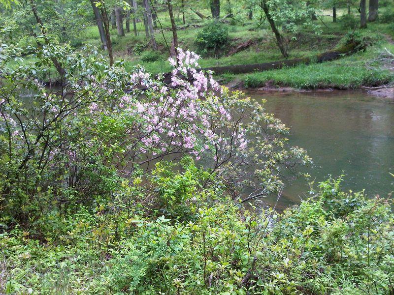 Ml2 river