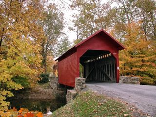 Pmb_autumn_roddy_road_covered_bridge__generatedPreview