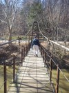 Patapsco_swinging_bridge