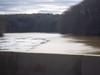 Br_bridge_ice_3